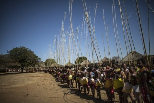 SAFRICA-TRADITION-REED DANCE